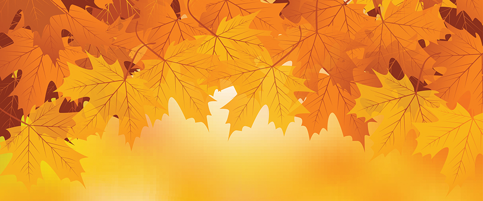 fall-background-960x400